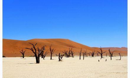 Aux dunes de Sossusvlei en Namibie