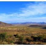 Palmwag en Namibie