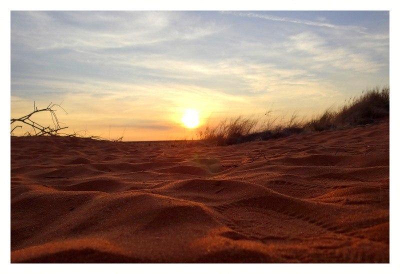 Dans le désert du Kalahari en Namibie