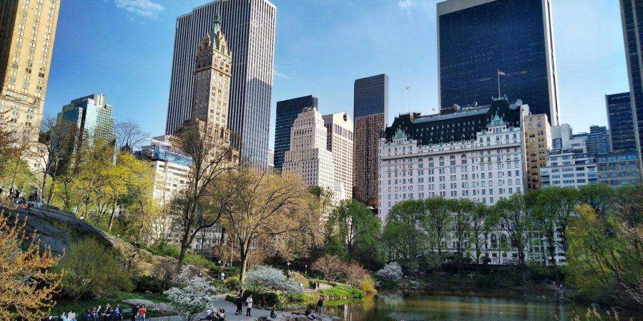 Activités à New York