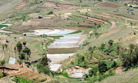 Fianarantsoa (seconde partie)