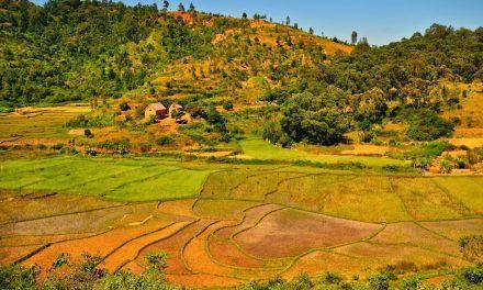 Fianarantsoa (première partie)